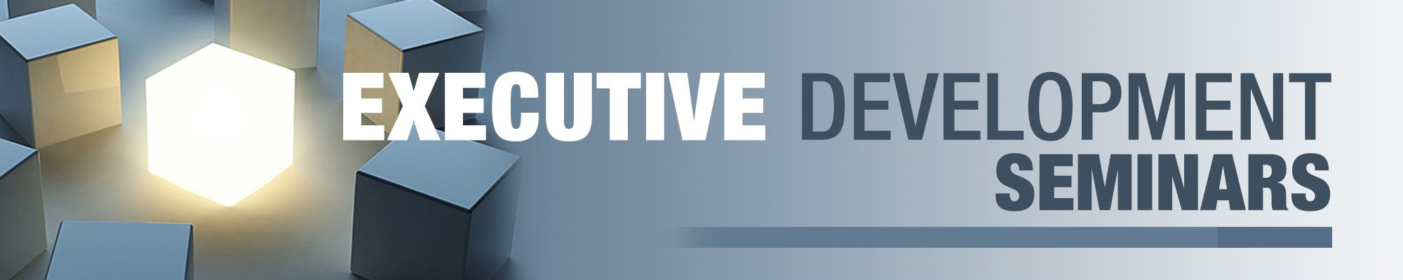 Executive Development Seminar: Ethical Leadership for Healthy Organizational Culture
